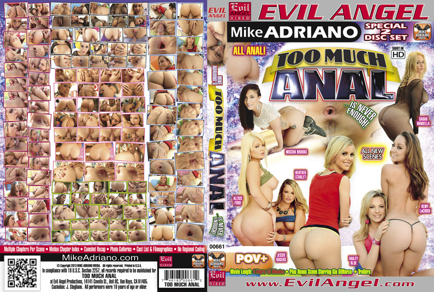 Too Much Anal (2013)