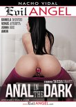 Download Nacho Vidal's Anal In The Dark